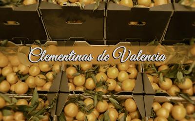 Clementina de Valencia, dulce y sin semilla